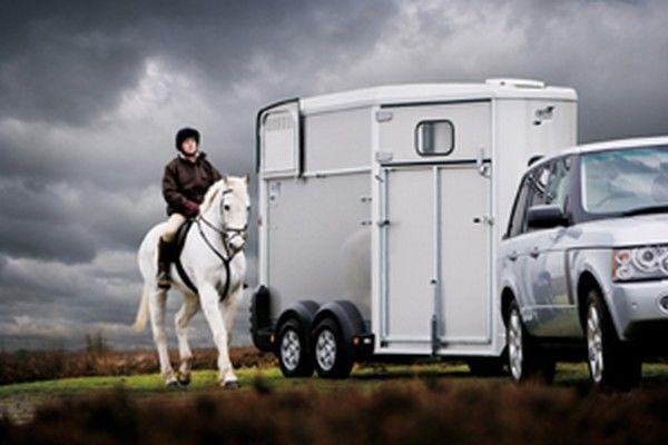 IFOR Williams HB511 Pferdeanhänger
