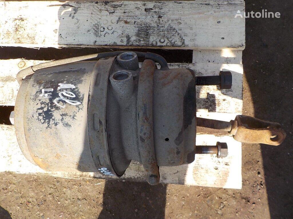 Pruzhinnyy  LH Bremsakkumulator für DAF LKW