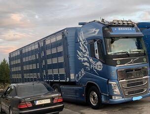 VOLVO TOP FH13 540-EURO 6 -4 level Jumbo PLAVAC   Viehtransporter LKW
