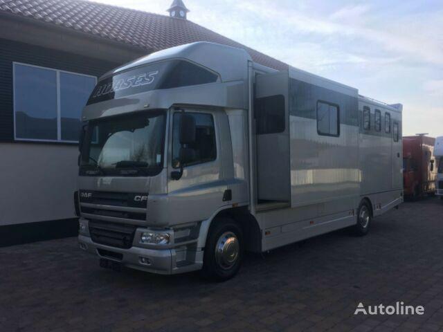 DAF Pferdetransporter Pferdetransporter
